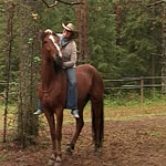 Семинар по Natural Horsemanship пройдет в ЦКО «Караван»